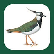 App Icon for Birds of Germany & Switzerland App in Czech Republic Google Play Store