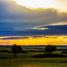 Sunset by Ebtesam Elias - Landscapes Travel ( savannah, masai mara, kenya, travel photography )