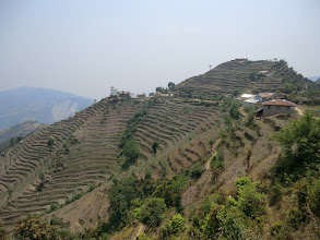 Photo: Rice terraces in Chipling (2170m)