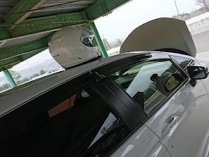 フィット GK5 RSのカスタム事例画像 がんさんの2019年05月01日17:02の投稿