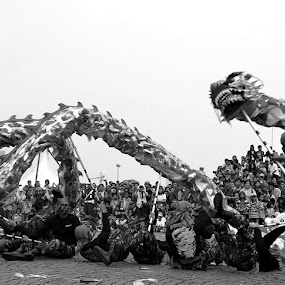 THE LIONG SOLDIER by Hari Darmawan - News & Events World Events ( event, arie )