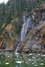 Photo: Falls in Tracy Arm