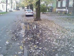 Photo: trawniki Grajewska, stan X 2008