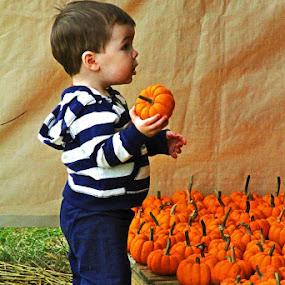 Pumpkin Patch 2013 002_PE_RS_pe.jpg