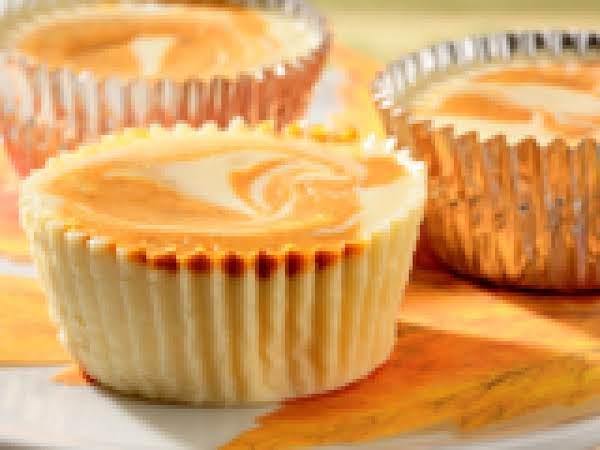 Mini Swirled Pumpkin Cheesecakes Recipe
