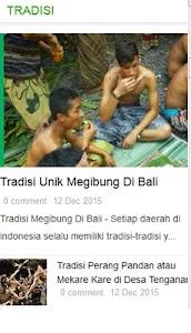 Berita Bali screenshot 0