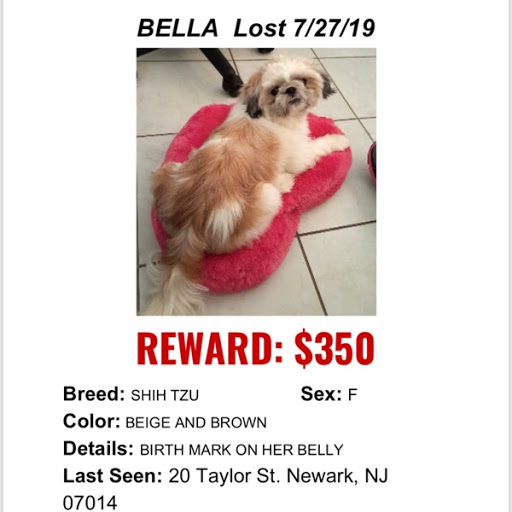 Bella, MISSING Jul 27, 2019