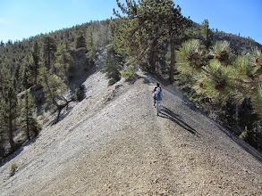 """Photo: A good example of why this is called a """"Backbone"""" trail"""