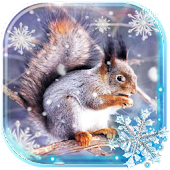 Winter Squirrel Forest