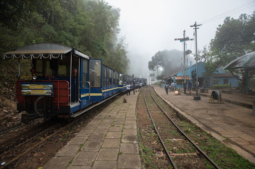 Foggy day at Hillgrove station