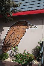 Photo: Broken Crow  StreetArt - Austin, Texas