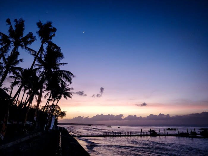 coconut tree, beach, moon, and evening colors as seen from a beach of nusa penida island in indonesia bali
