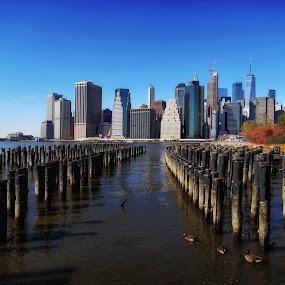 Manhattan skyline  by Aurelio Firmo - City,  Street & Park  Skylines ( brooklyn, manhattan, skyline )