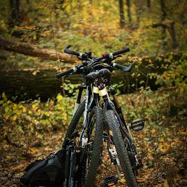 Rest time by Ovidiu Gruescu - Sports & Fitness Cycling