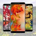 Autumn Wallpaper Ideas APK