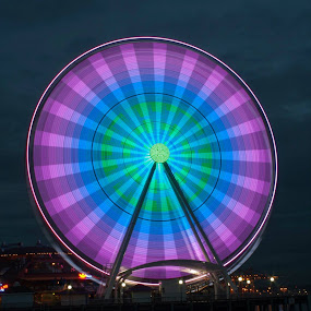Seattle Great Wheel by Anita Elder - Buildings & Architecture Other Exteriors (  )