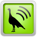 Sonic Turkey Lite icon