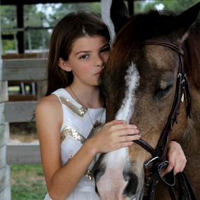 contest5 by Patti Westberry - Animals Horses (  )