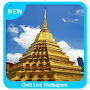 Gold Live Wallpapers APK icon