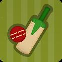 Village Cricket icon