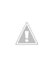 Photo: yellow-tufted honeyeater