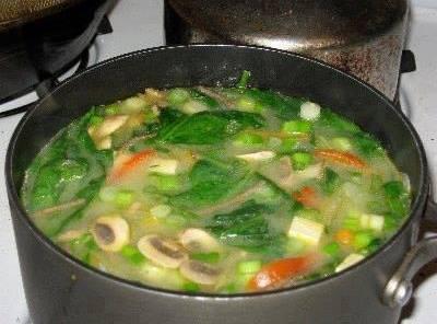 Negative Calorie Diet Soup Recipe