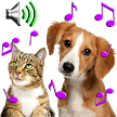 Animal Ringtones - Animal Sounds APK