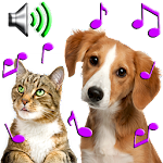 Animal Ringtones - Animal Sounds Icon