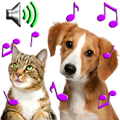 Animal Ringtones - Animal Sounds