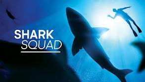 Shark Squad thumbnail