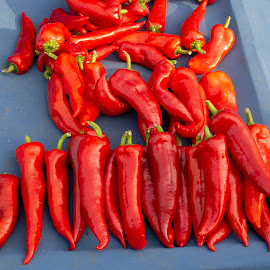 Fresh red pepper vegetables on the street market by Ciddi Biri - Food & Drink Fruits & Vegetables ( pepper, digestive system, chili, financial, healthy life, spice, hot, vegetable, agriculture, red, immune health, price, farming, healthy food, vegetarian, digestion, immune system, cooking, kilogram, kitchen, value, organic, harvest, ingredient, cook, cuisine, raw, spicy, food, market, street market, paprika, background, healthy, digestive health, fresh, crop )