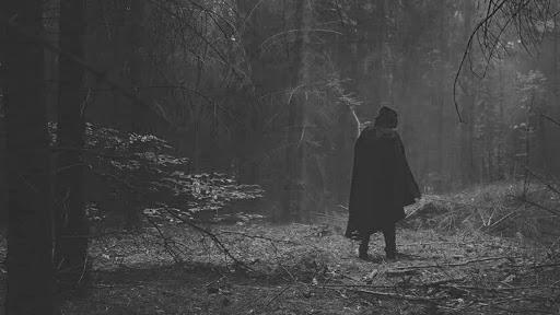 Hombre perdido en el bosque por culpa del tue tue