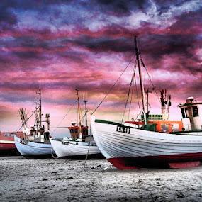 Danish fishing boats by Stephen Davis - Transportation Boats (  )