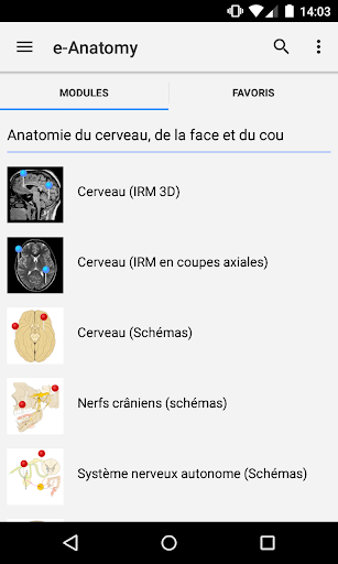 e-Anatomy screenshot for Android