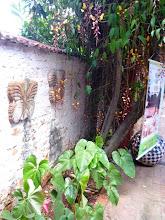 Photo: A planta sapatinha de judia dá um charme indescritível ao lugar. http://celiamartins.blogspot.com/