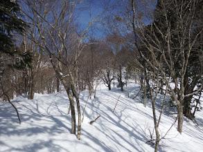 稜線に合流(左に)