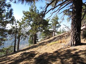 Photo: Approaching the summit of Sadie Hawkins