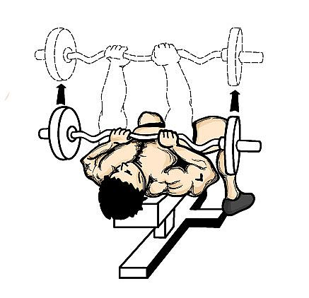 close-grip-bench-press-weightlifting-routine.jpg