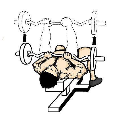 close-grip-bench-press-weightlifting-routine.jpg
