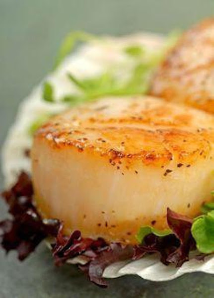 Ocean Scallops, Ocean Shrimp Recipe