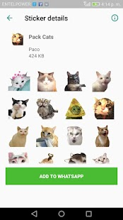 Gatos Cats WAStickerApps Memes Momazos Screenshot