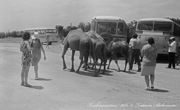 Photo: На экскурсии в Каракумы. 1976 год