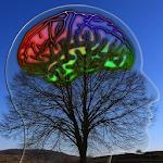 Brain Healing Sounds 1.2