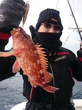 Photo: 根魚の活性は抜群!