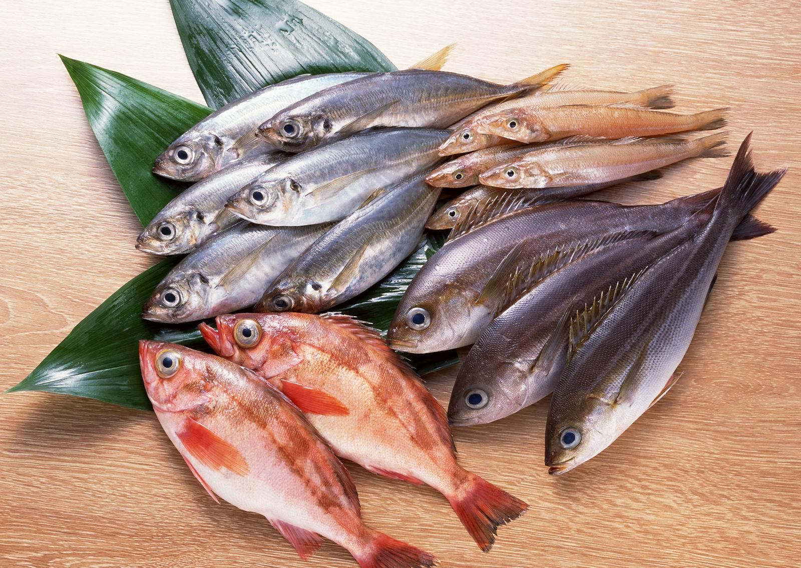 fresh-fishes.jpg