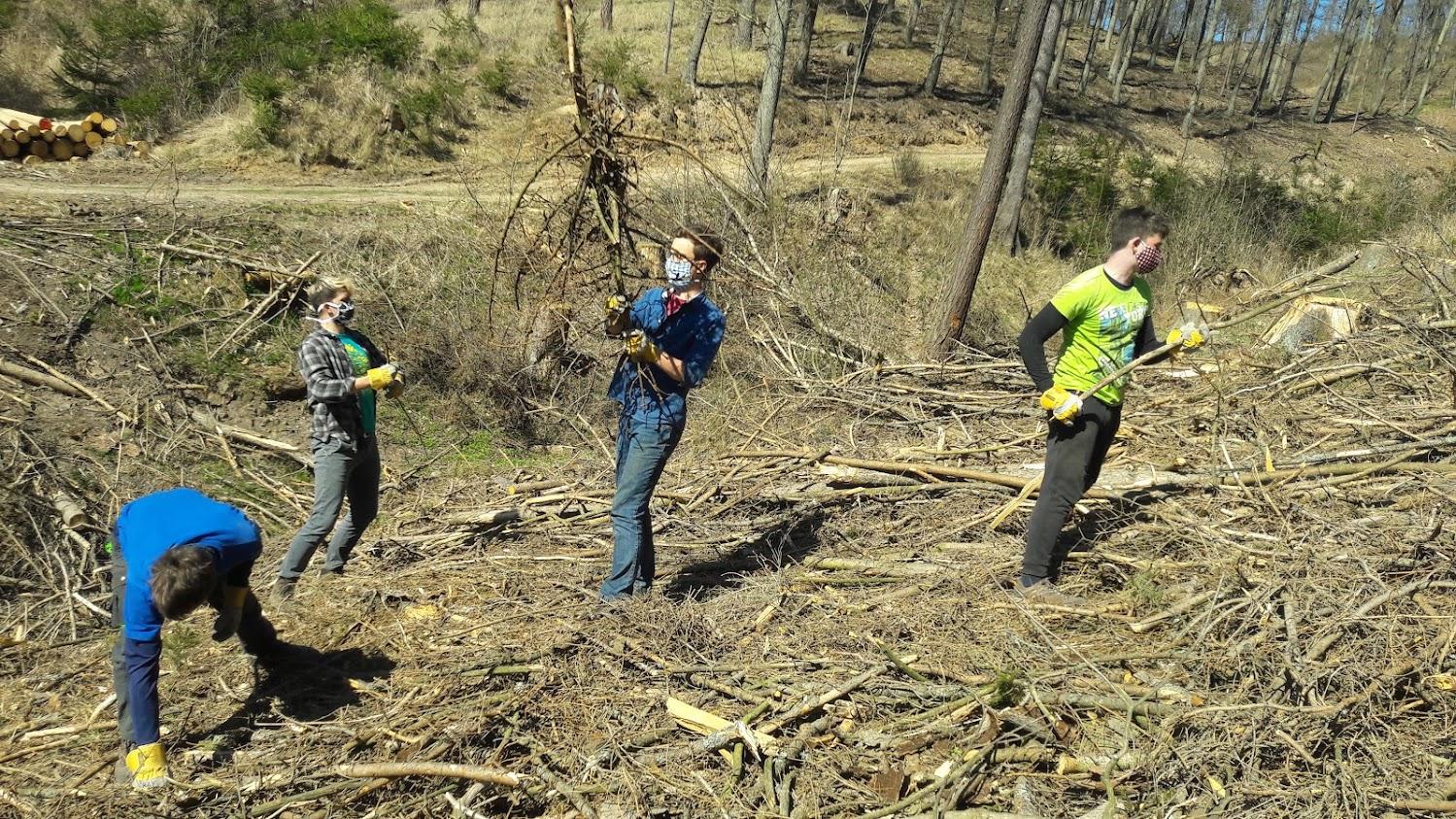 Studenti využili volného času a vyrazili na brigádu pomoci s obnovou lesů. Foto: Jan Kouřil