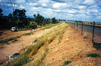 Photo: AUS-RY23  Australia - Railroads in Queensland. Vetiver used to stabilize an embankment
