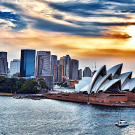 Sunset at the Opera  by Nelida Dot - Buildings & Architecture Public & Historical ( sydney, form, opera house, seashell, sunset, building, architecture,  )