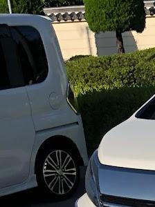 ヴェルファイア AGH30W ZGエディション30年式のカスタム事例画像 ともぞさんの2018年07月01日18:40の投稿