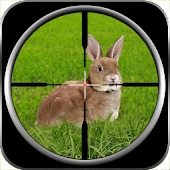 US Rabbit Killer Assassin